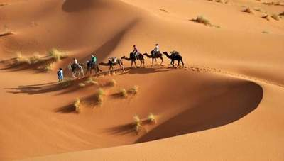 Secrets of the Sahara desert, which opened the modern scientists