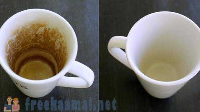 How to get rid of any coffee stains surface
